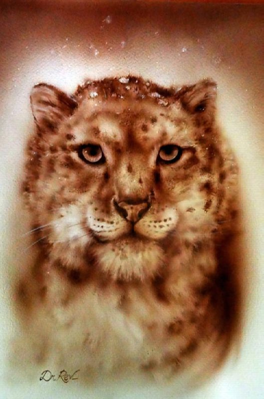 Wild cat by Rev Mayers