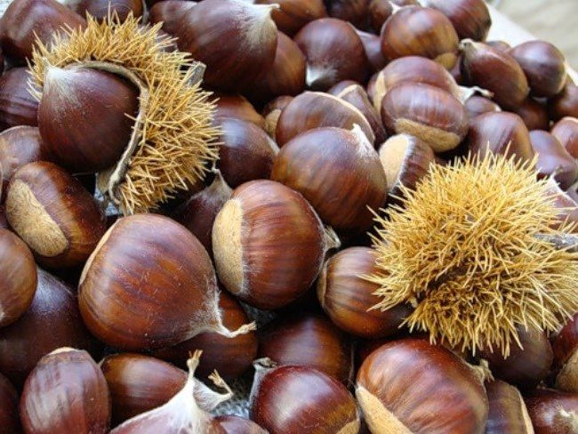 Wonderful chestnuts