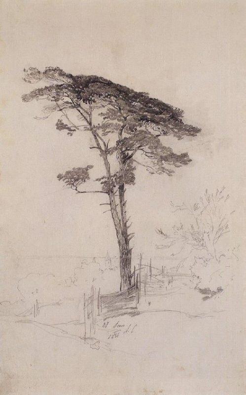 Alexey Kondratievich Savrasov. Pine. 1854