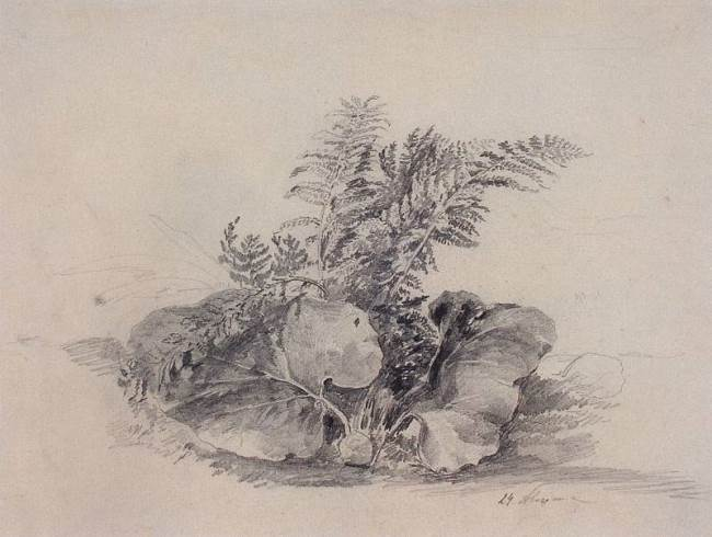 Alexey Savrasov. Fern leaves and burdock