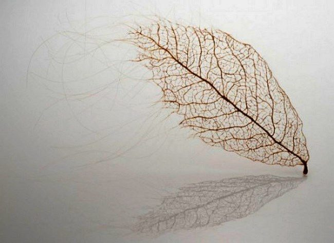 Amazing leaves made of human hair by Jenine Shereos
