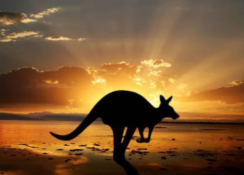 Australia – amazing country