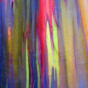 Colorful eucalyptus