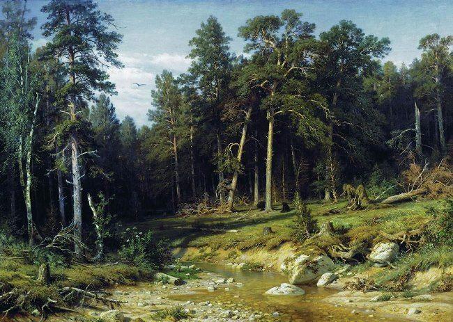 Ivan Ivanovich Shishkin. Pinery. Vyatka province. 1872
