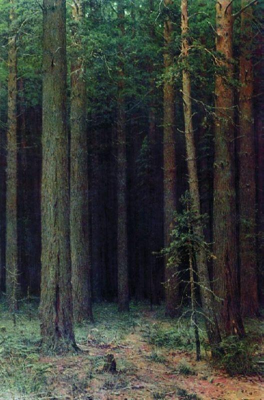 Ivan Ivanovich Shishkin. Reserve. Pinery. 1881