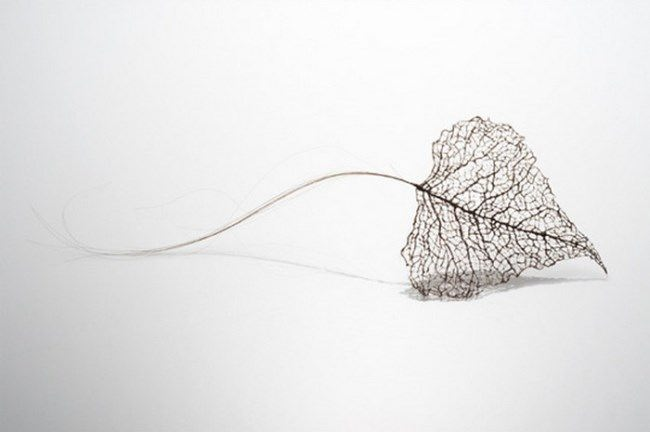 Leaves made of human hair by Jenine Shereos