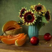 Lovely still life with melon