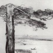 Pines from Gusarev. Alexey Kondratievich Savrasov. 1850s