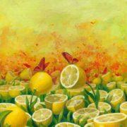 Butterflies by Vitaliy Urzhumov