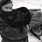 Cat during the Siege of Leningrad