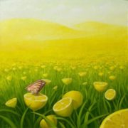 Lemon field by Vitaliy Urzhumov