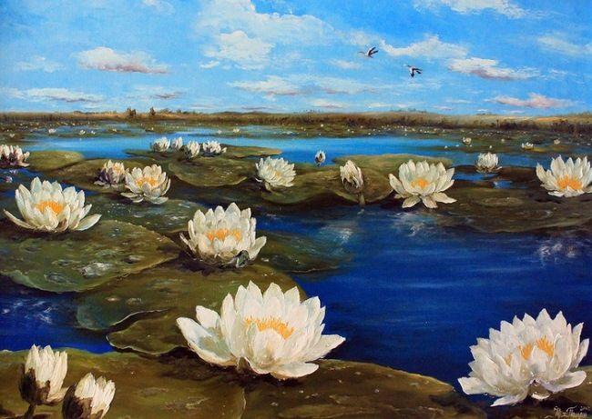 Pretty lilies