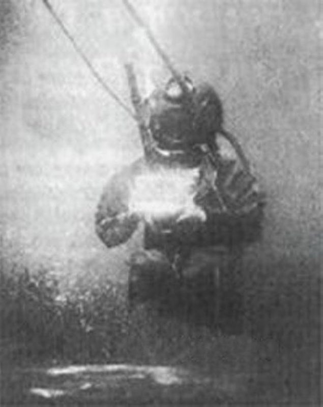 Underwater picture by William Thompson