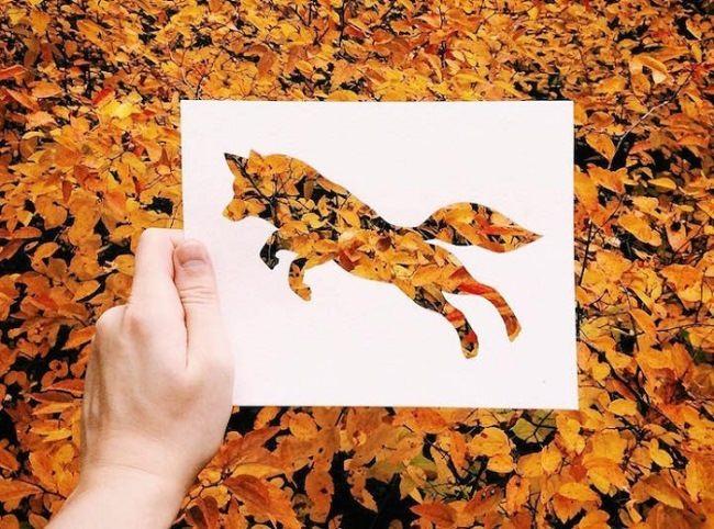 Fox by Nikolai Tolstykh