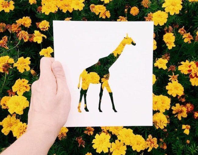 Giraffe by Nikolai Tolstykh