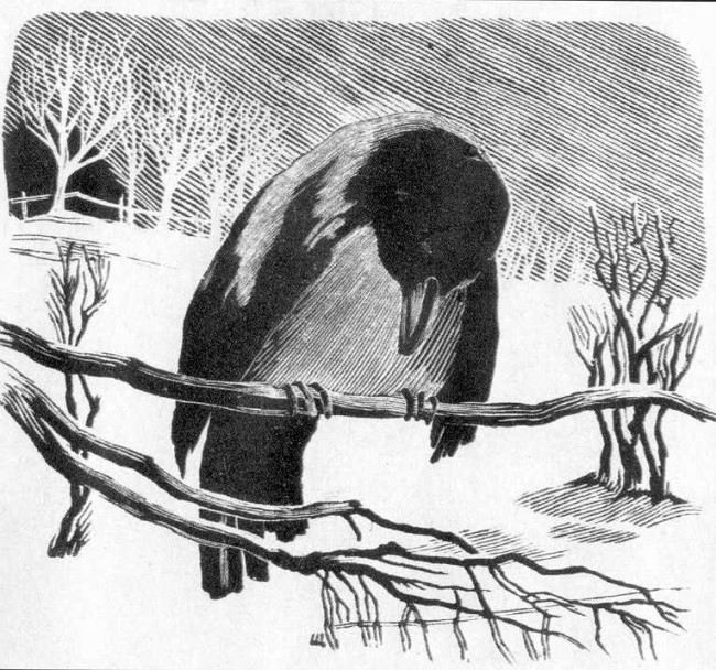 Shcherbakov. Crow, 1940