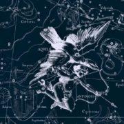 Aquila, Antinous