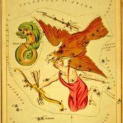 Delphinus, Aquila and Sagitta