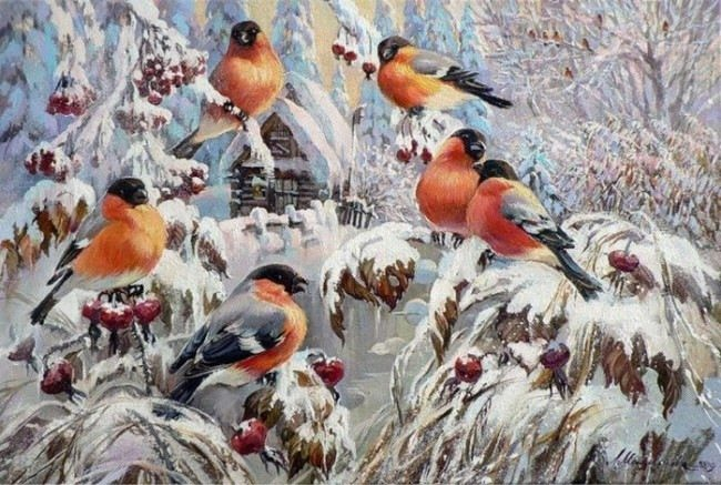 Pretty bullfinches