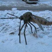 This sculpture of a mosquito-mutant is installed in Novosibirsk