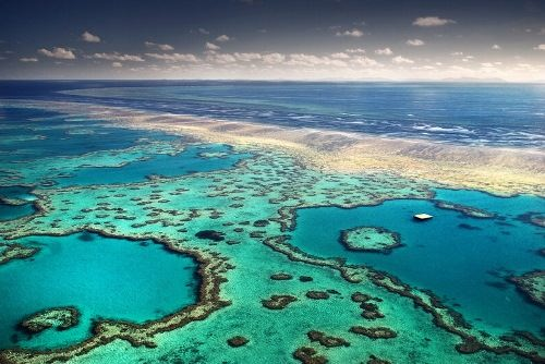 Great Barrier Reef - Island of Reefs