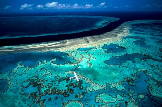 Magic Great Barrier Reef