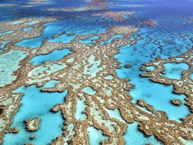 Unique Great Barrier Reef
