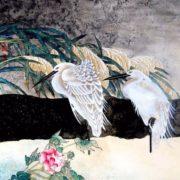 Heron – amazing bird
