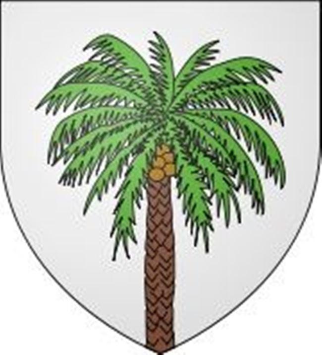 Palm - Prince of Plants
