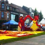 Colorful Lochristi Begonia flower Festival
