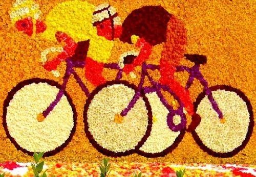 Bicycling. Colorful Lochristi Begonia flower Festival