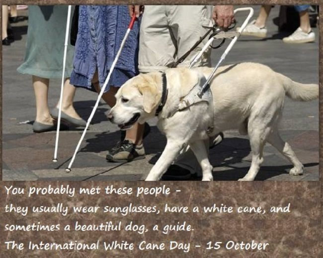 International White Cane Day meaning