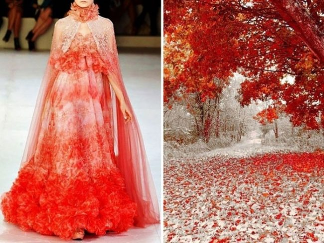Autumn and winter Colors