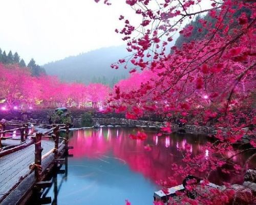 Fabulous landscape. Japanese traditionally forbidden colors