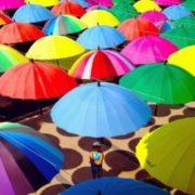 Yener Torun photographing Istanbul colors