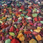Picturesque Lake McDonald colorful stones