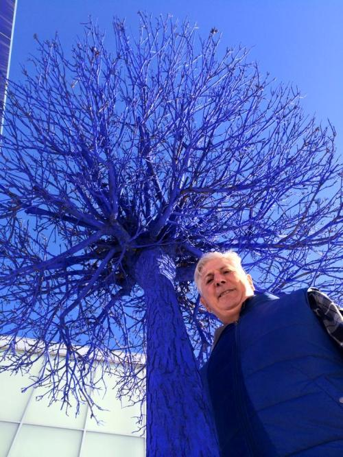 Blue tree installations