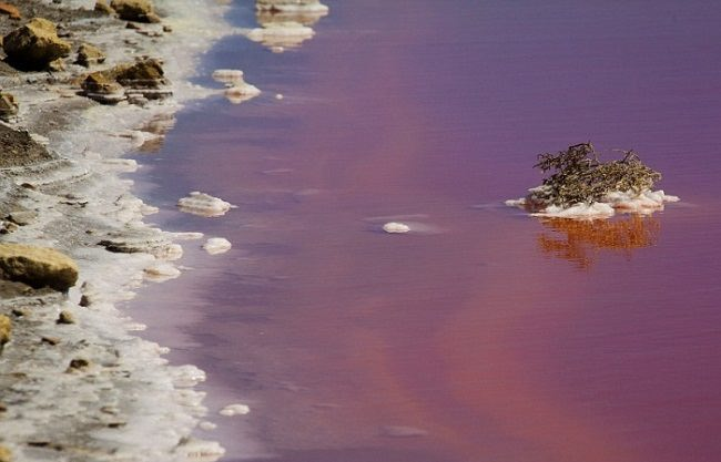 French Camargue blood red lake natural phenomenon