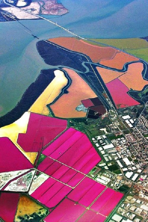 San Francisco Bay Multicolored ponds