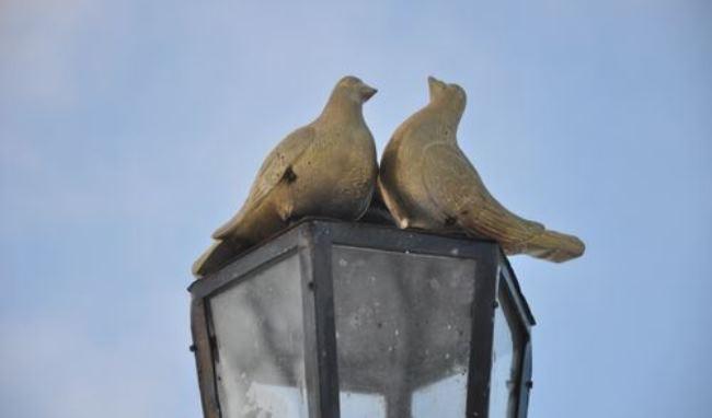 Izhevsk. Monument to pigeons