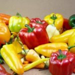 Peppers – Hot and Spicy