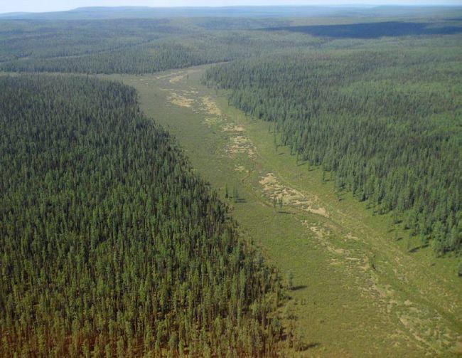 Podkamennaya Tunguska River Area